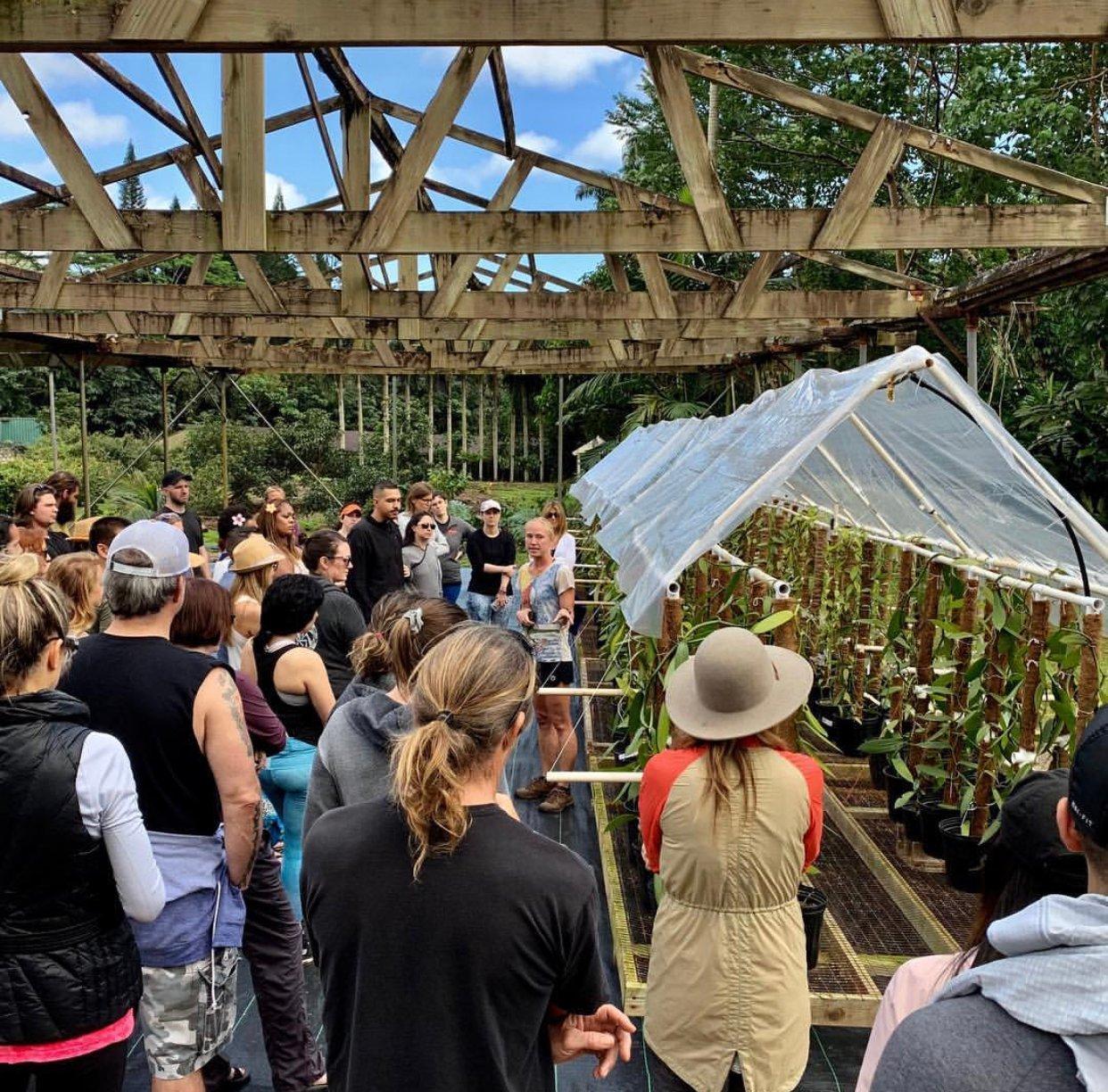 Event sustainability - Brand experience - wanderlust